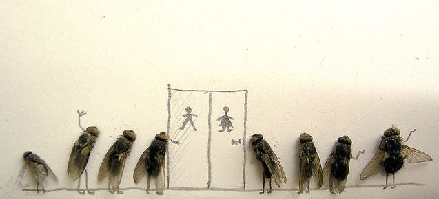 Dead_flies_art_07